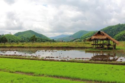 Fertile river valleys
